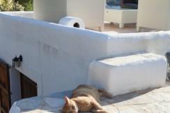 villa 304-4 bedrooms-salinas16_Fotor